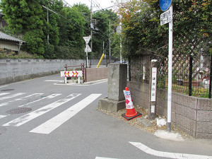 氷川神社北東の変則五差路