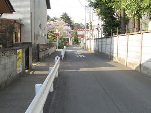 鎌倉橋から氷川神社への道