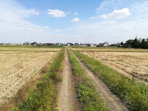 道の写真1